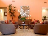 Оранжевая гостиная – красочное оформление самого позитивного цвета + 71 фото