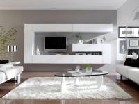 Системы хранения для гостиной — современные реалии и технические особенности (77 фото + видео)