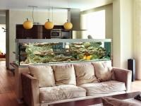 Аквариум в гостиной – 87 фото лучших способов красивого декора интерьера!