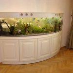 Akvarium v gostinoy 16