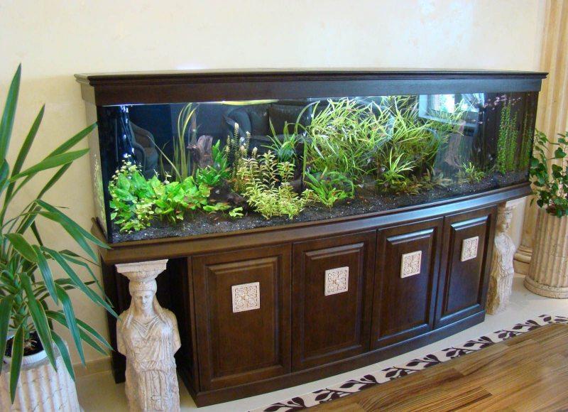 Akvarium v gostinoy 17