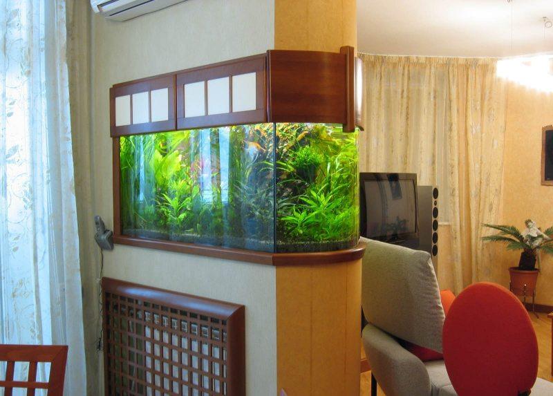 Akvarium v gostinoy 27