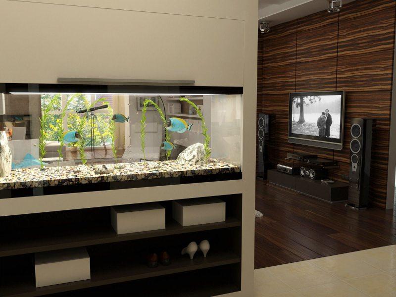 Akvarium v gostinoy 29