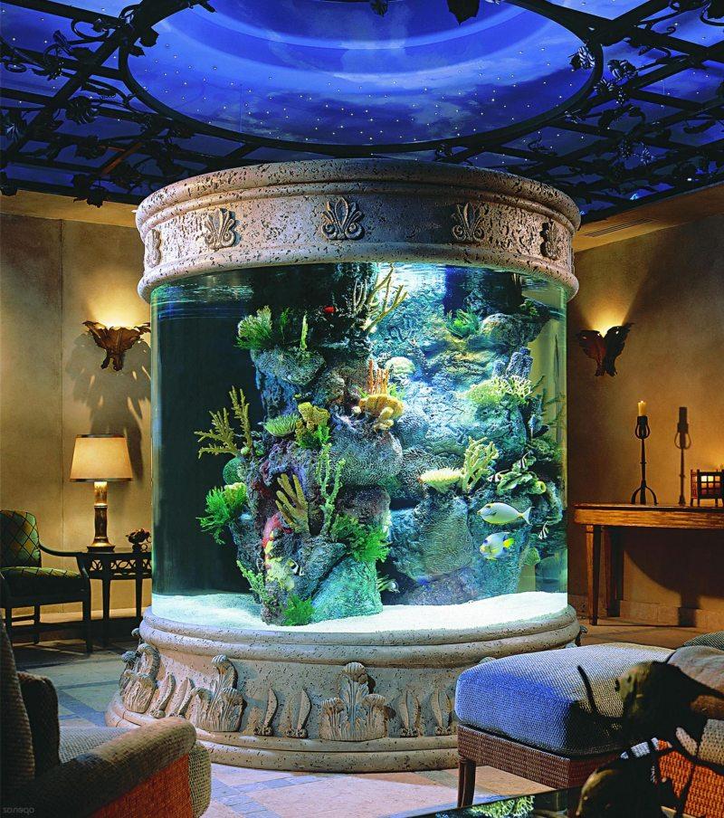 Akvarium v gostinoy 3