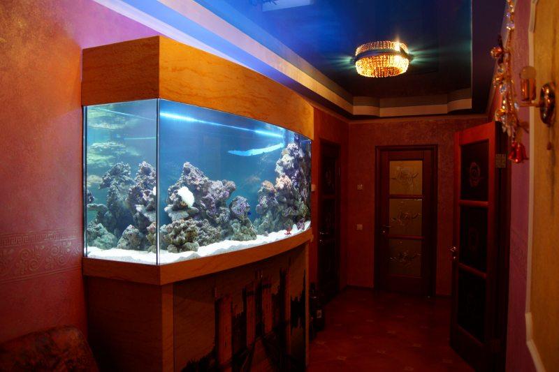 Akvarium v gostinoy 46
