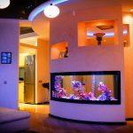 Akvarium v gostinoy 55