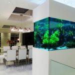 Akvarium v gostinoy 60