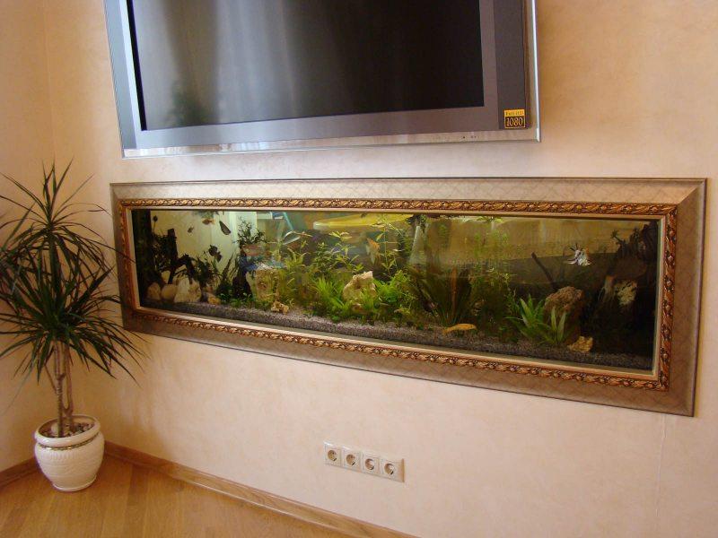 Akvarium v gostinoy 64