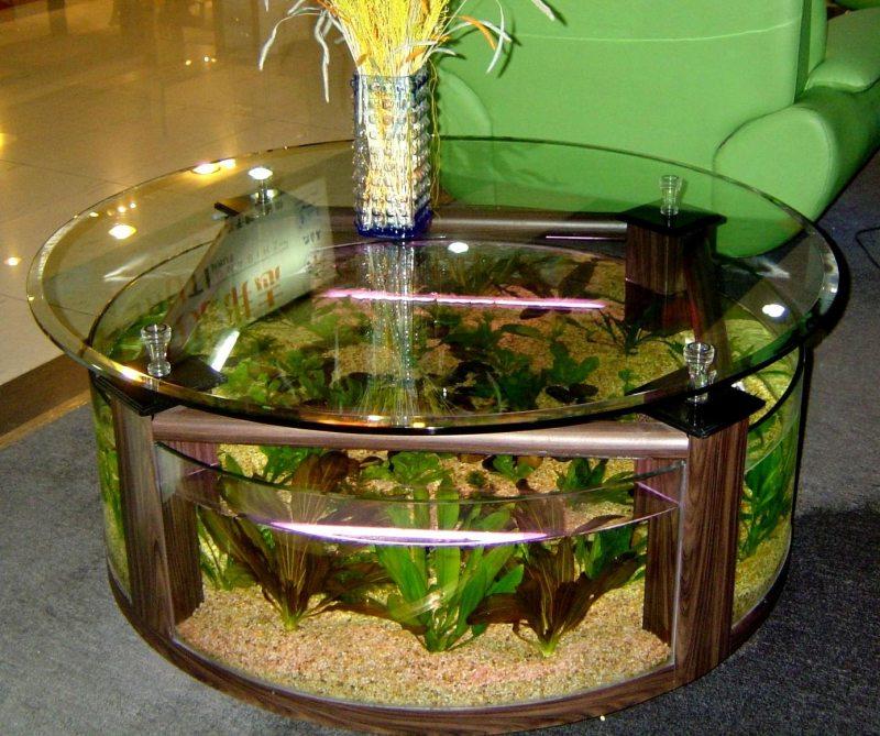 Akvarium v gostinoy 66